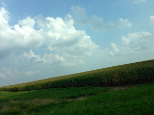 Lots of cornfields on our house hunt.